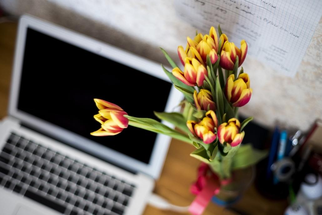 blumen-büro_flowers-871685_1280_pixabay_free-photos